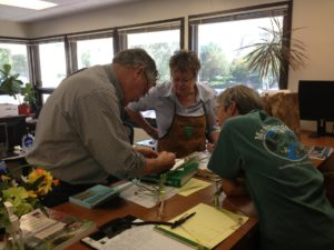 Cooperative Extension experts diagnose samples in our Master Gardener office. Photo by Ashley Nickole Andrews.