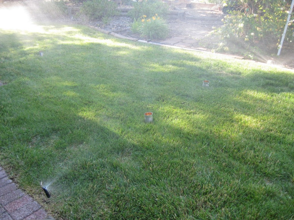 Using a can test to measure sprinkler rate and uniformity.