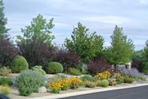 2017 Green Industry Training @ University of Nevada Cooperative Extension | Reno | Nevada | United States