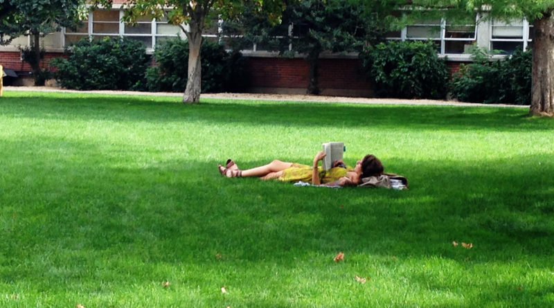 Fall Lawn Care Grows Healthy Spring Lawns