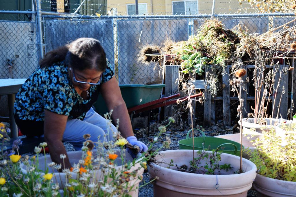Woman cleaning debris from flower pots.