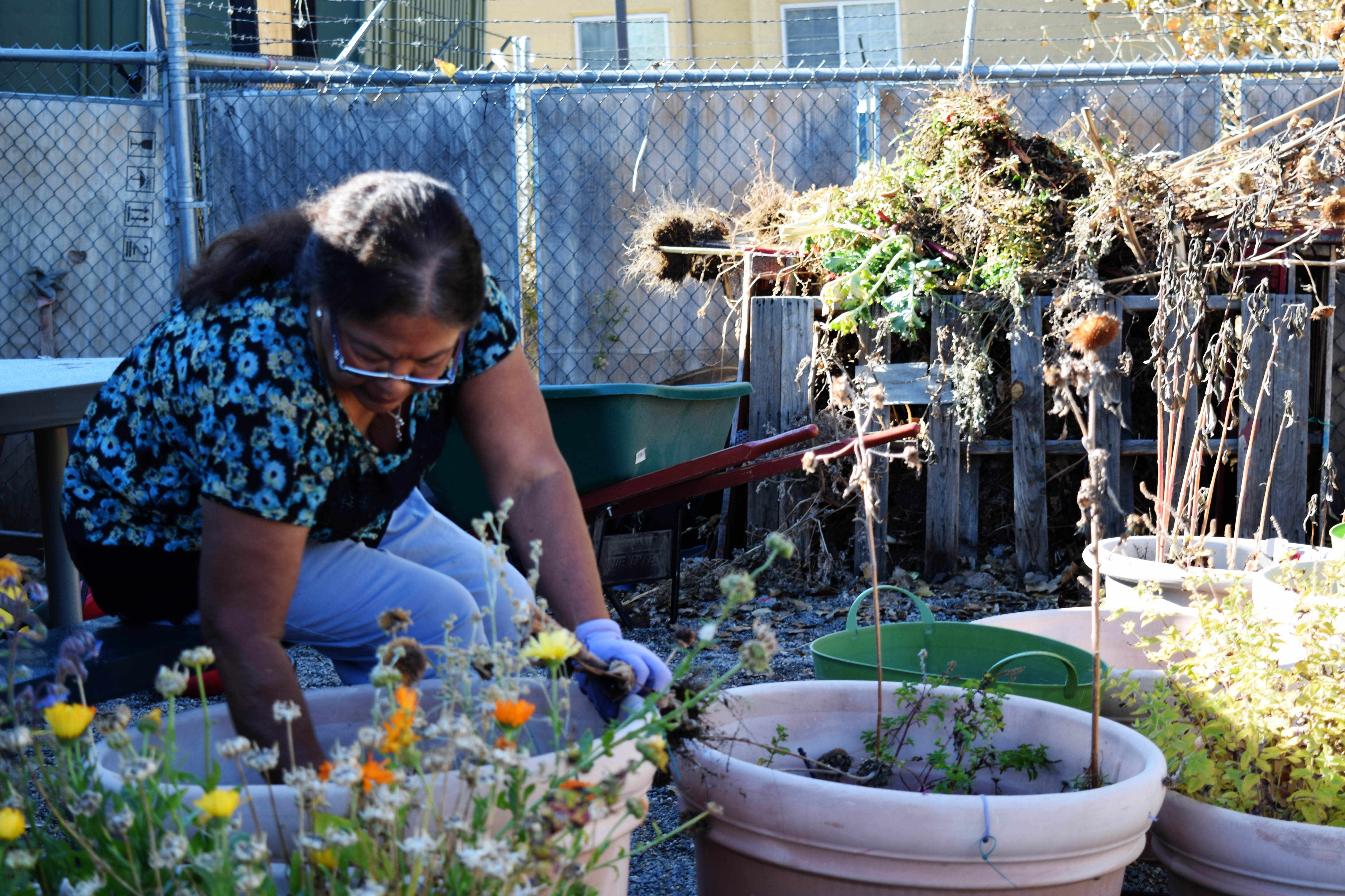 Woman cleaning debris from flower pots.