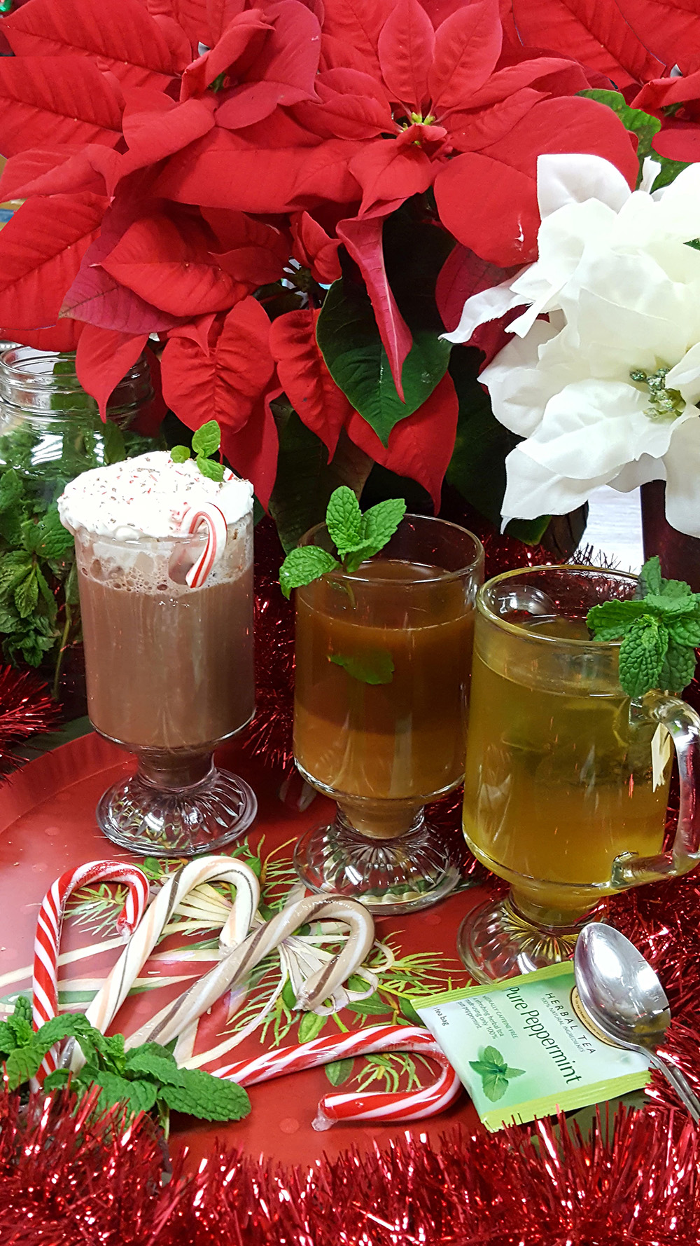 Mint can enhance drinks in several ways, from adding a single sprig to placing whole leaves in the drink. Photo by Wendy Hanson Mazet, Cooperative Extension.