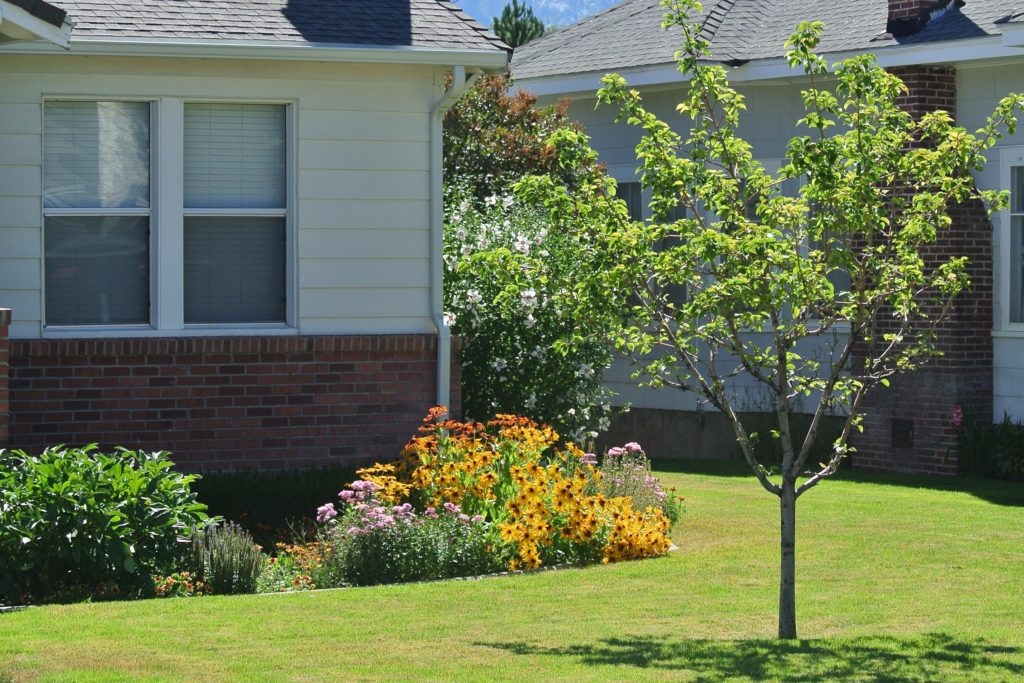 front yard with trees, flowers and lawn