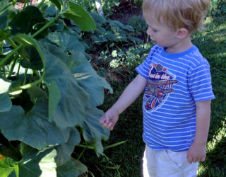Connect kids with nature through gardening