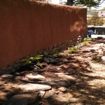 adobe wall and plants