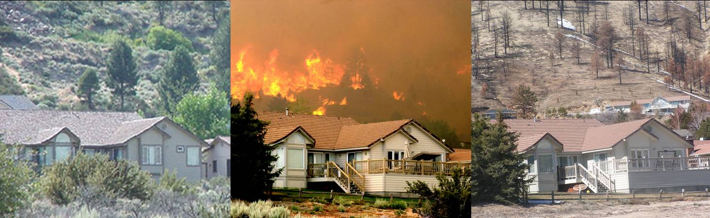 Defensible Space… Things to Do this Fall