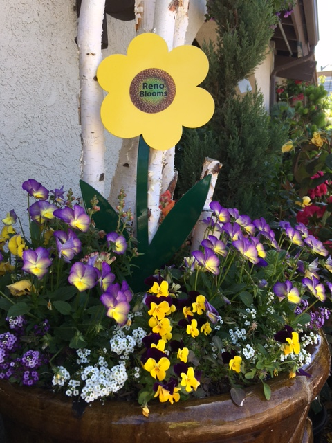 Reno Blooms Flower Container